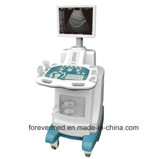 Diagnosis Equipment Color Doppler 3D/4D Digital Ultrasound