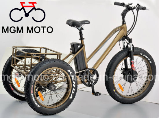 Lithium Battery Fat Tire 24inch Cargo Electric Tricycle pictures & photos