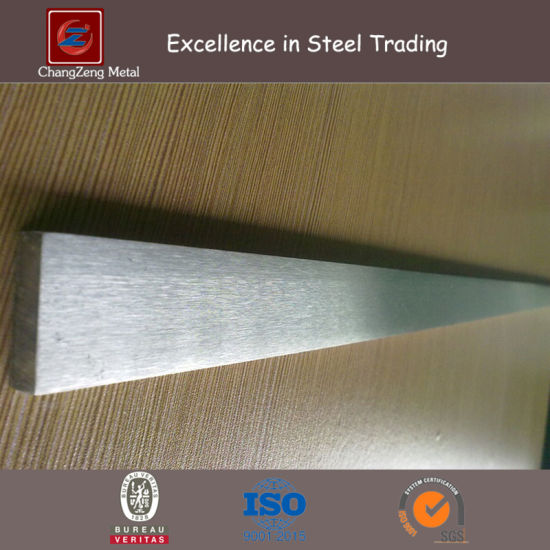 Stainless Steel Flat for Industrial (CZ-F64) pictures & photos