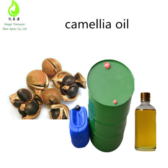China Cosmetic Raw Material Cold Pressed Camellia Seed Oil With Best Price China Hair Oil And Camellia Seed Oil Price