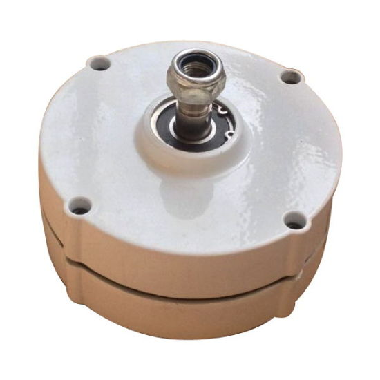 China small safe 100w 12v24v pmg alternator permanent magnet small safe 100w 12v24v pmg alternator permanent magnet generator get latest price solutioingenieria Choice Image