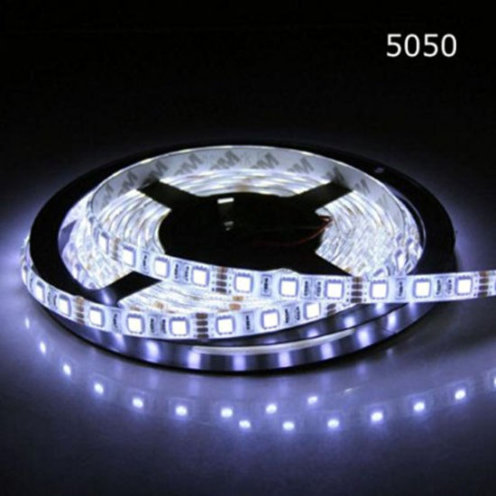 Single Color SMD5050 LED Strip pictures & photos