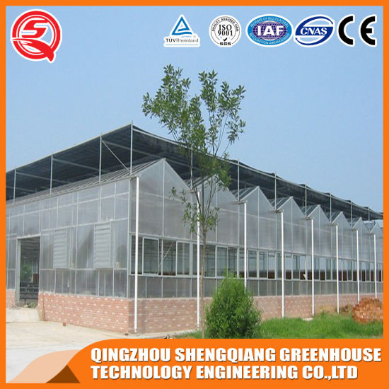 China Agricultural Greenhouse Polycarbonate Greenhouse Used Frames