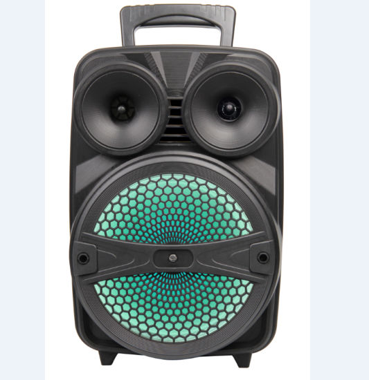 8'' Portable Rechargeable Bluetooth Speaker with LED Light