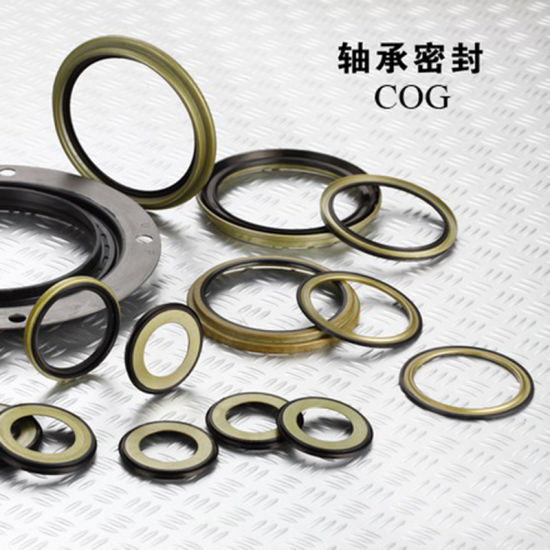 Auto Spare Auto Parts Shaft NBR Rubber Mechanical Tc FKM Rotatory Oil Seal