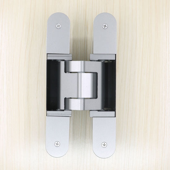 Aureate Adjustable Door Hinges 180 Degree