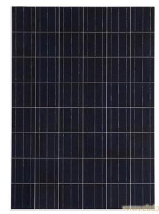 36V250W Good Quality and Best Price Polycrystalline Solar Panel