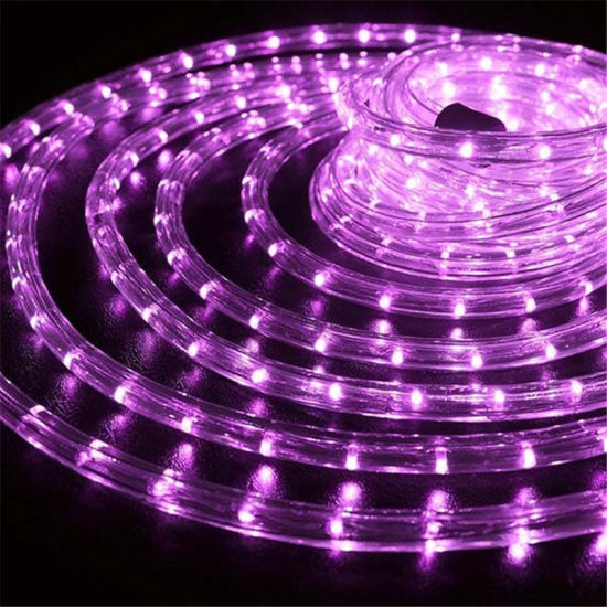 China purple led rope light for christmas decoration china high purple led rope light for christmas decoration aloadofball Image collections