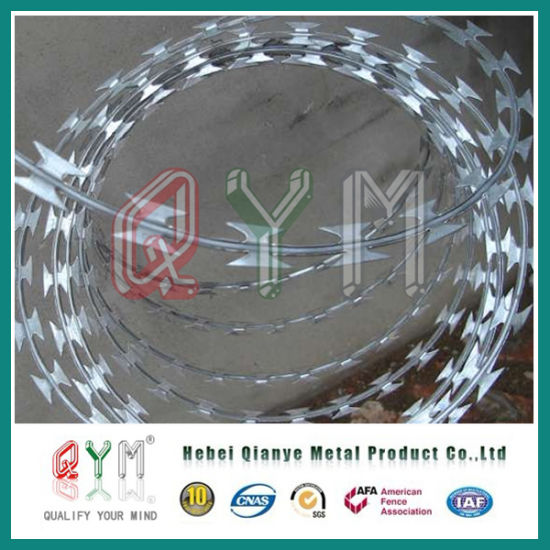 Razor Barbed Wire /Galvanized Concertina Razor Wire Low Price