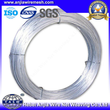 Electro Galvanized Binding Iron Wire for Building pictures & photos