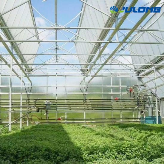 Sale! Polycarbonate Sheet Greenhouse with Hydroponic System and Automatic Control System for Planting Vegetable