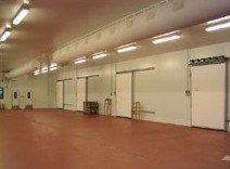 300 Ton Walk in Meat and Fish Processing Cold Storage (LLC)