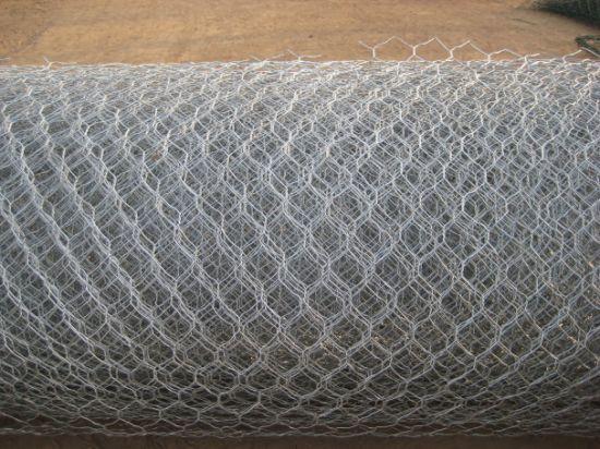Wire Mesh/ Hexagonal Wire Netting/ Hexagonal Chicken Wire/ Gabion Mesh