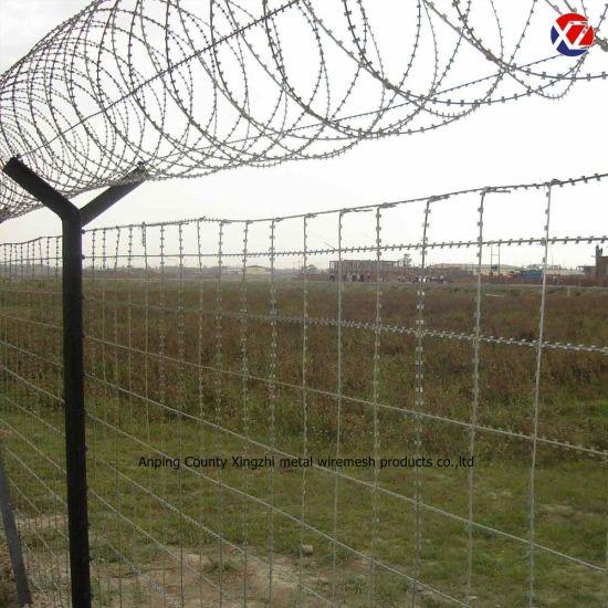 Galvanized Security Razor Barbed Wire Fencing