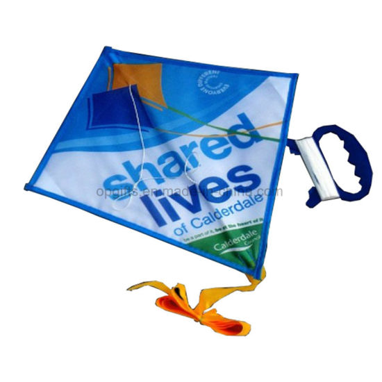 Custom Promotional Gifts Popular Outdoor Cheap Kite pictures & photos