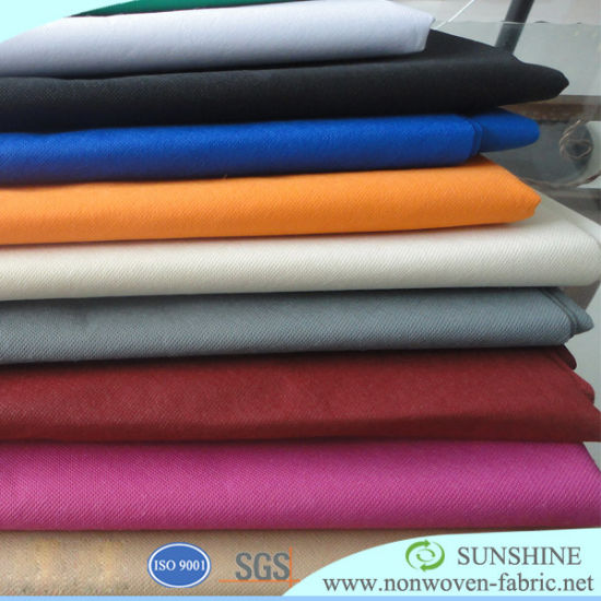 TNT Fabric PP Spunbond Non Woven Fabric pictures & photos
