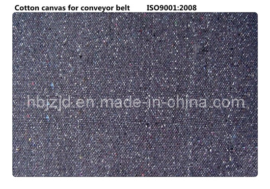 Cotton Canvas &Tn/C Canvas for Conveyor Belt pictures & photos