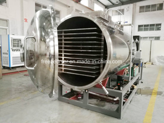 Food Dryer Service