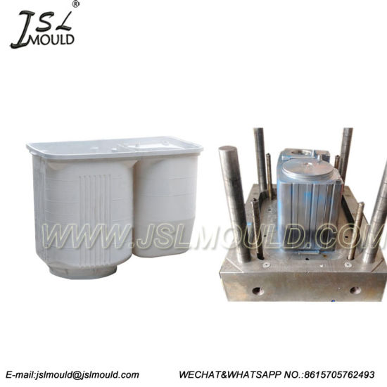 OEM Custom Plastic Twin Tub Washing Machine Mould pictures & photos