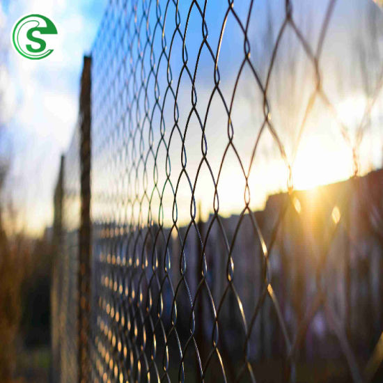 Removable Hot-Dipped Galvanized Temporary Chain Link Fence