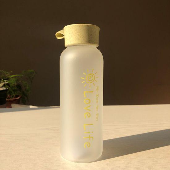 Best Seller Unisex Glass Bottles for Water Fast Ship Custom Logo 480ml Sport Glass Water Bottle with Wheat Straw Lid in Stock
