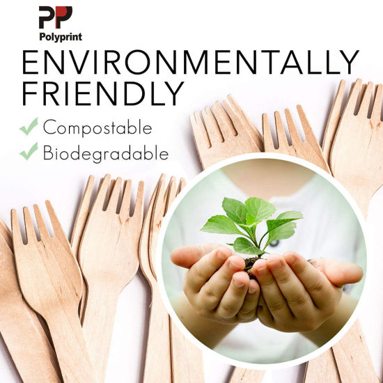 Environmental Wood Cutlery Spoon Fork Knife