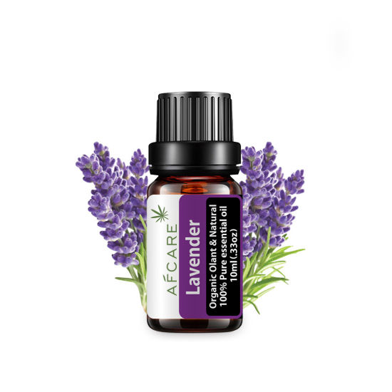 Lavender Essential Oil Massage The Head Soothe The Nerves and Push The Back Essential Oil