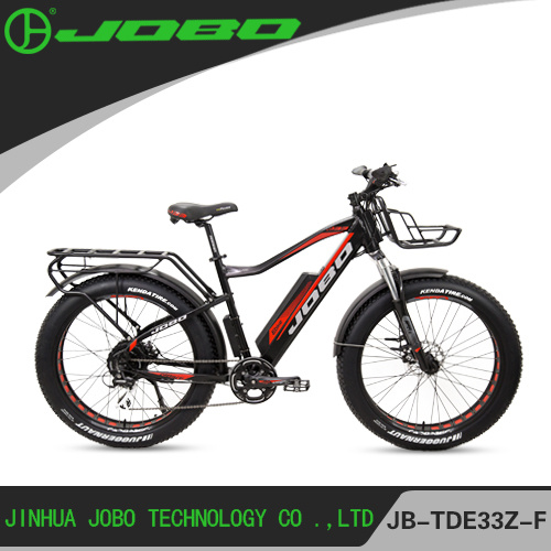 1000W Electric Bicycle Fat Bike with Ultra System for Snow, Sand and Beach En15194