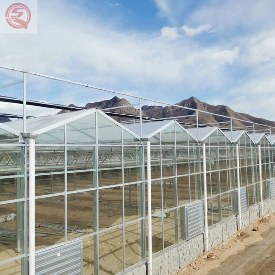 Greenhouse Ecological Restaurant Built by Aluminum Alloy Frame Green Family