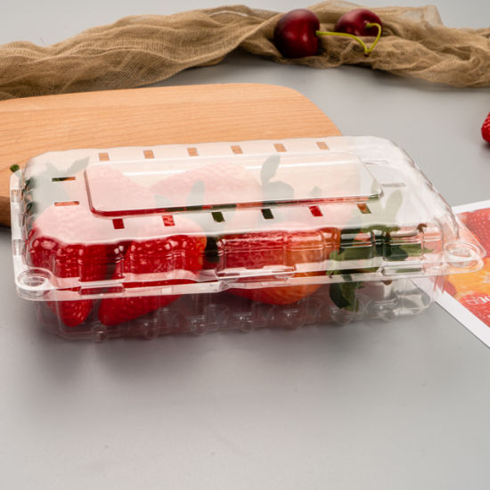 Custom Fruit Package Clear Disposable Blister Packaging Boxes