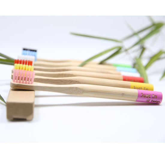 FDA Fsc BSCI Certification Biodegradable Eco-Friendly Soft Bristles Bamboo Toothbrush