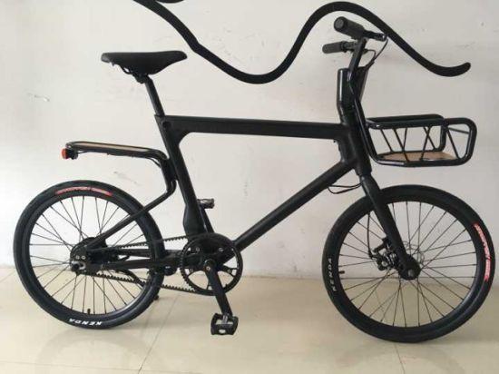 "22"" Popular Pure Electric Bike/E-Bike"