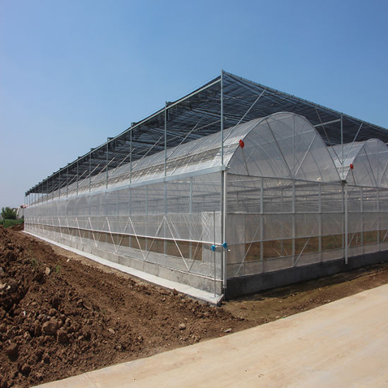 Plastic Film Greenhouse with Automatic Window Openers for Greenhouse