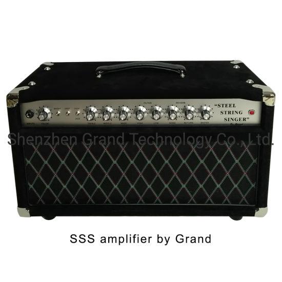 Professional Tube Guitar AMP Head 50W Dumble Style SSS Steel String Singer Tube Amplifier (SSS)