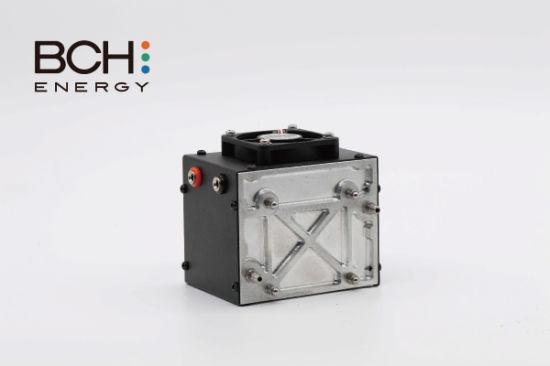 100W Pemfc Hydrogen Fuel Cell for Uav Drone/Bike/Motor Battery