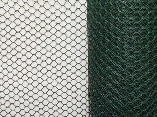 Bwg18-22 Chicken Mesh Hexagonal Wire Mesh Netting with Reverse Twist