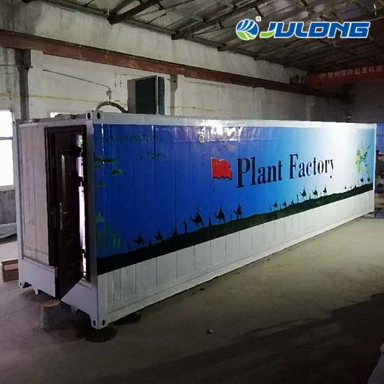 Beautiful Vertical Planting Factory Hydroponic 40hc Container Farming Greenhouse for Vegetables