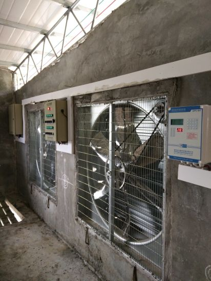 Poultry Equipment Exhaust Fan for Livestock Poultry Farm pictures & photos