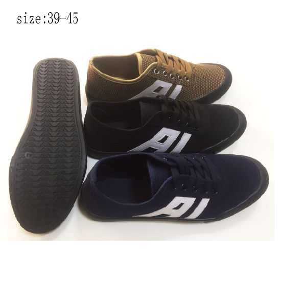 New Style Injection Men Casual Shoes Canvas Shoes (ZL194-1)