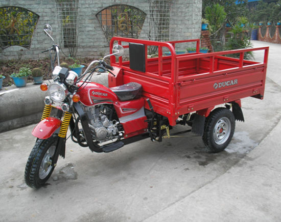 Made in China Hot New Three Wheel Cargo Motorcycle pictures & photos