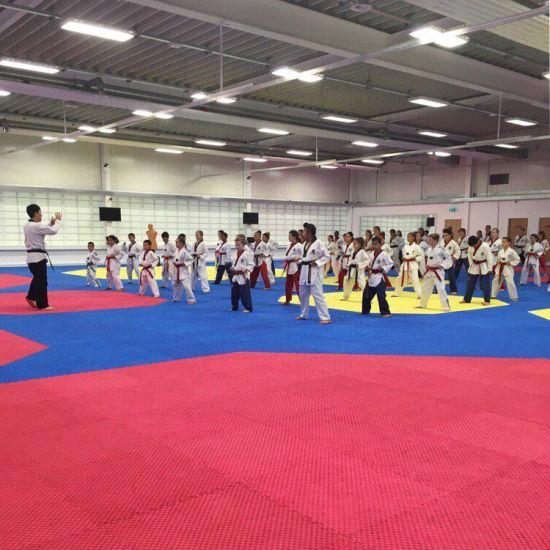 Eva Foam Floor Tatami Taekwondo Gymnastic Floor Mat Karate Mat