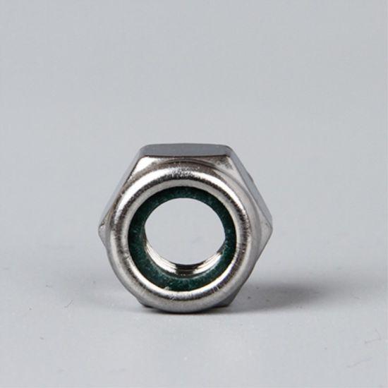 Ss 304 DIN982 Hex Nylon Insert Lock Nut