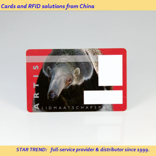 ID Card with Magnetic Strip and Signature for Guard pictures & photos