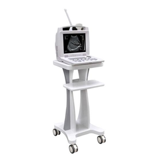 Laptop Hospital Used Echography Ultrasound Machine USG Scanner
