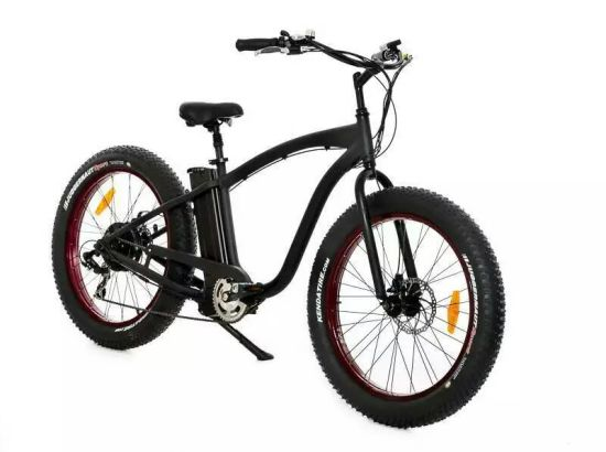 48V 750W Light Weight Alloy Mountain Snow Fat E Bicycle