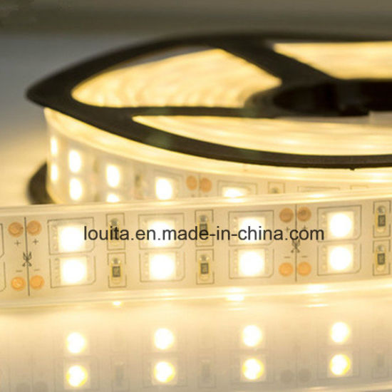 Double Row 5050 Silicone Tube Flexible LED Strip Light pictures & photos