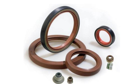 Auto Spare Parts of Oil Seal Rubber Product Rubber Seal