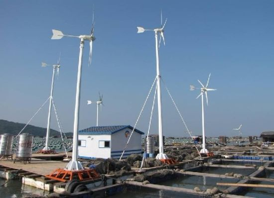 1000W Windmill Generator Wind Turbine Power pictures & photos