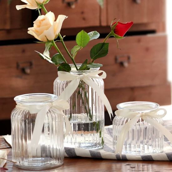 European-Style Transparent Glass Vase for Home Decoration pictures & photos