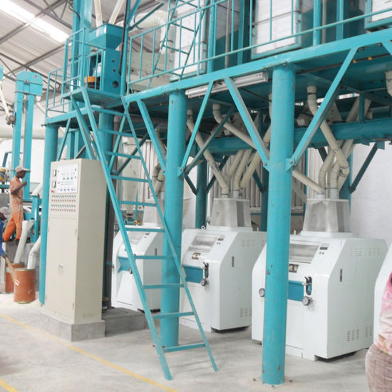 Desgined for Zambia Market 50t/24h Maize Flour Meal Milling Machine